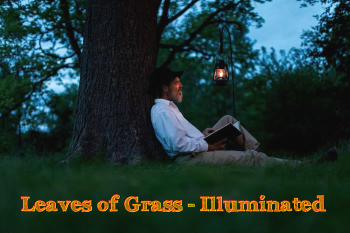 Leaves of Grass:  Illuminated